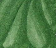 Jade Green SQ